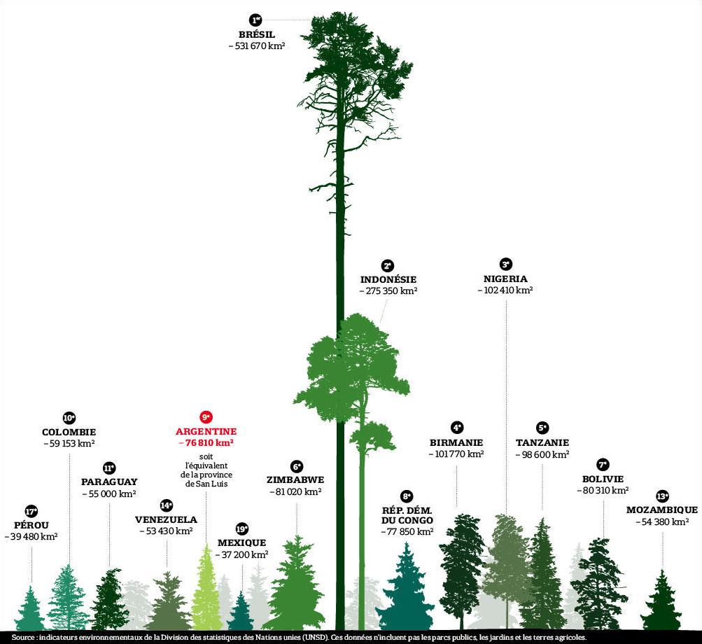 classement pays deforestation