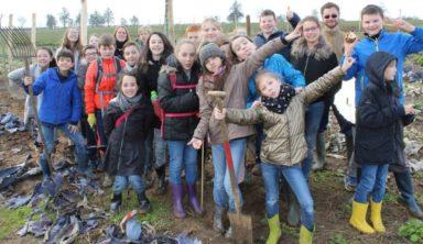 De la nécessité de planter des arbres en Belgique et au Mali