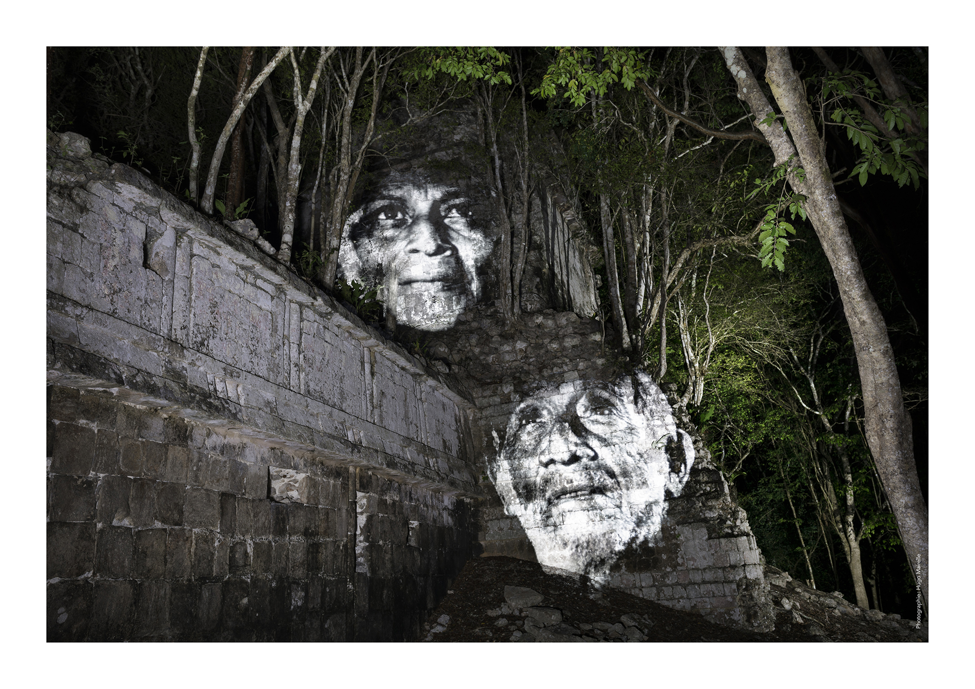 street art jungle maya