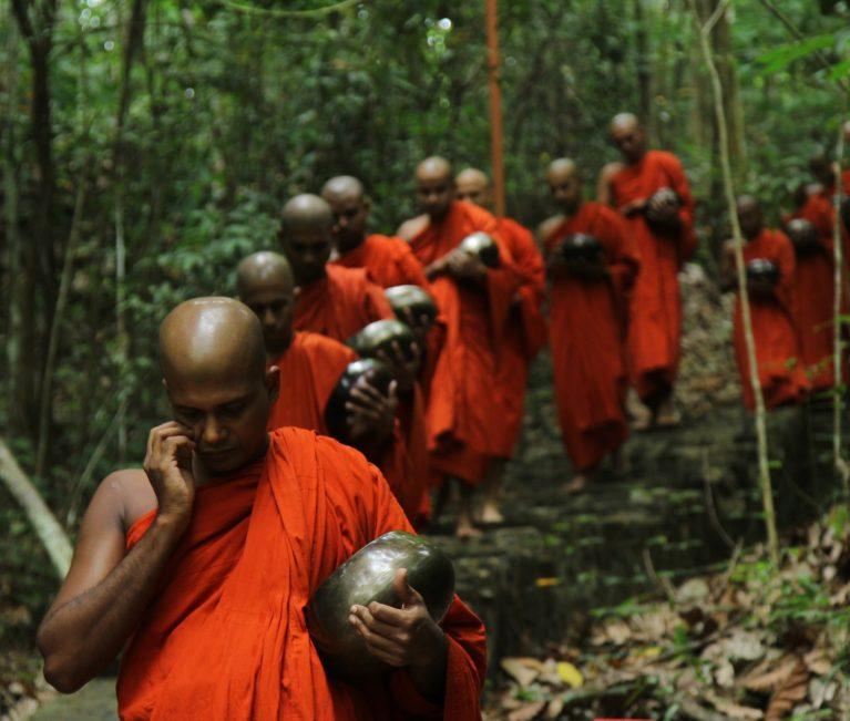 moines deforestation thailande