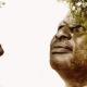 arbre portrait tanzanie