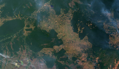 image satellite deforestation brésilienne
