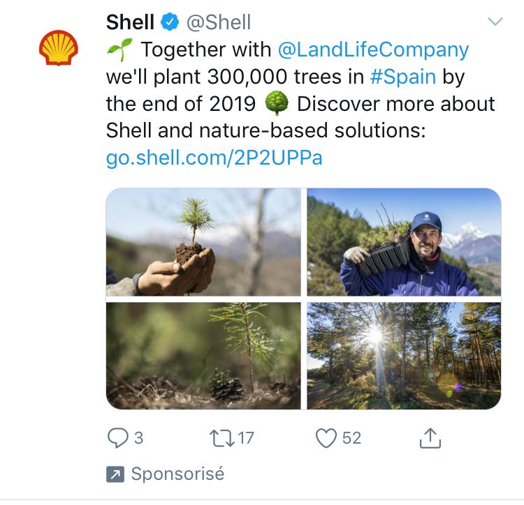 shell planter arbre climat