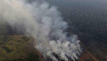 deforestation incendie Amazonie